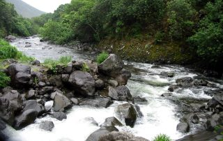 "Hawaii_Creek, ""Nature,"" Wikipedia, Creative Commons Attribution-ShareAlike 3.0 License."