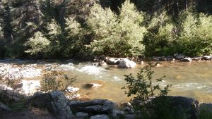 Dolores River, photo by Glenda Taylor, OneAndAllWisdom.com CC2.0